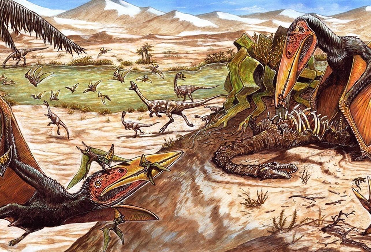 Mais um pterossauro é descoberto em Cruzeiro do Oeste