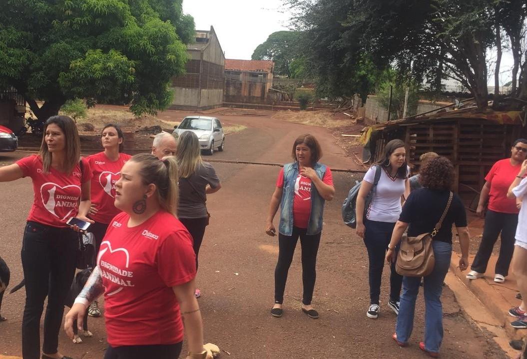 ONG protesta e vereadores pedem ajuda ao MP