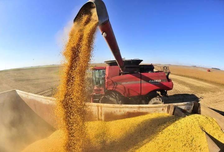 Paraná deve produzir 39 milhões de toneladas de grãos este ano