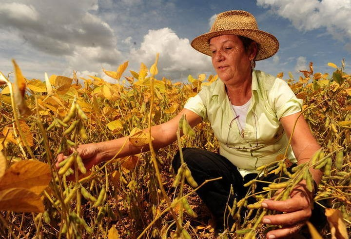 Protagonismo da mulher no agronegócio