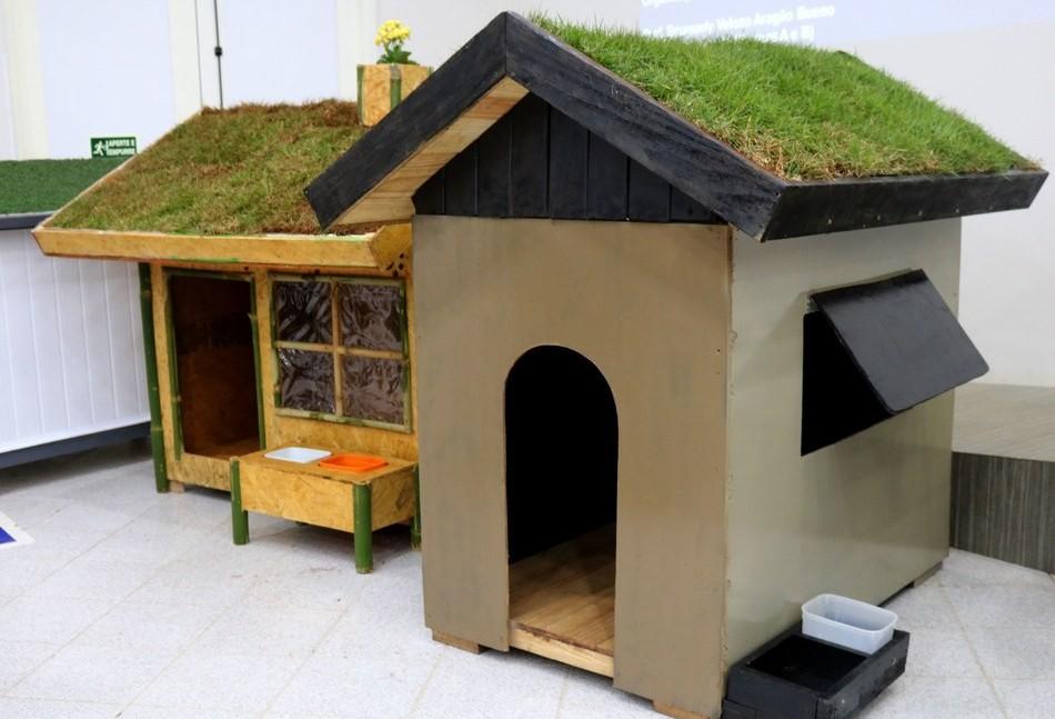 Casas sustentáveis para cachorro