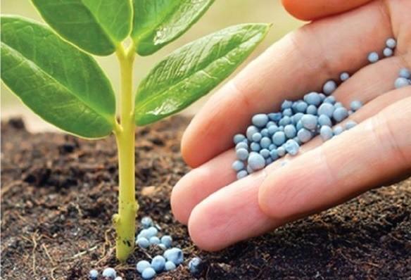 Vendas de insumos agropecuários crescem R$ 6 bilhões no Brasil