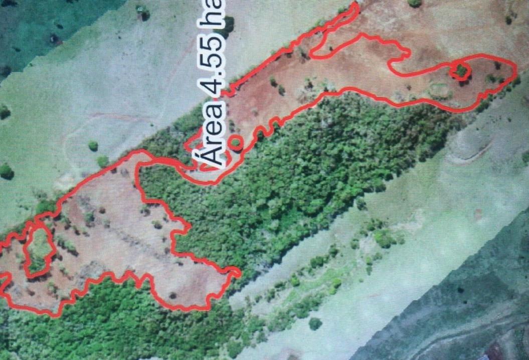 Com drone, Polícia Ambiental  confirma desmatamento