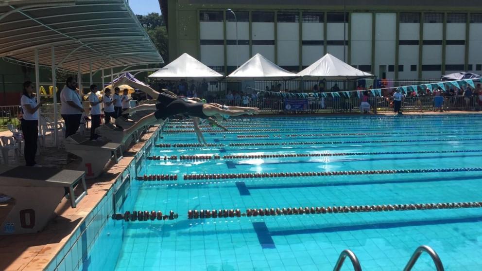 Vila Olímpica recebe campeonato paranaense verão de natação