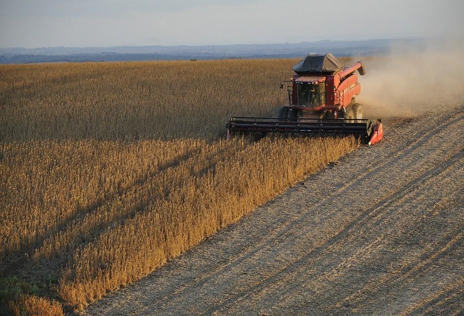 Produtores retomam colheita da soja após período de chuva