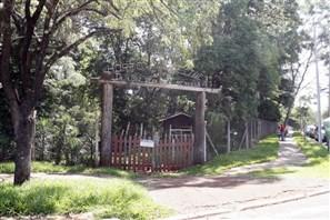 Prefeitura e Companhia Melhoramentos se reúnem mais uma vez para decidir futuro do Horto Florestal de Maringá