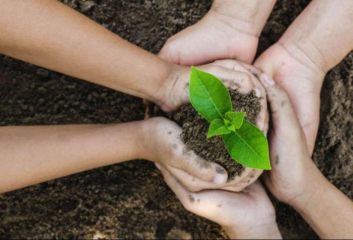Relatório aponta crescimento de 34% nos investimentos sustentáveis no planeta