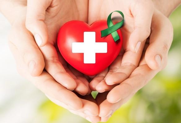 Entre janeiro e agosto deste ano, 54 transplantes de órgãos foram feitos em Maringá e região