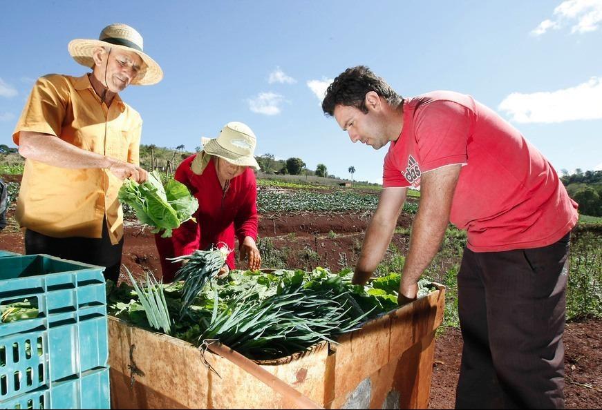 Agricultura familiar precisa ser preservada