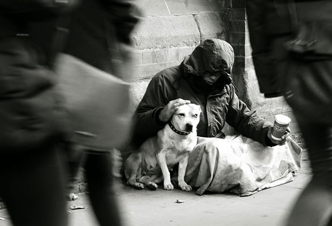 Pesquisa traduz em números a relação entre moradores de rua e animais de estimação