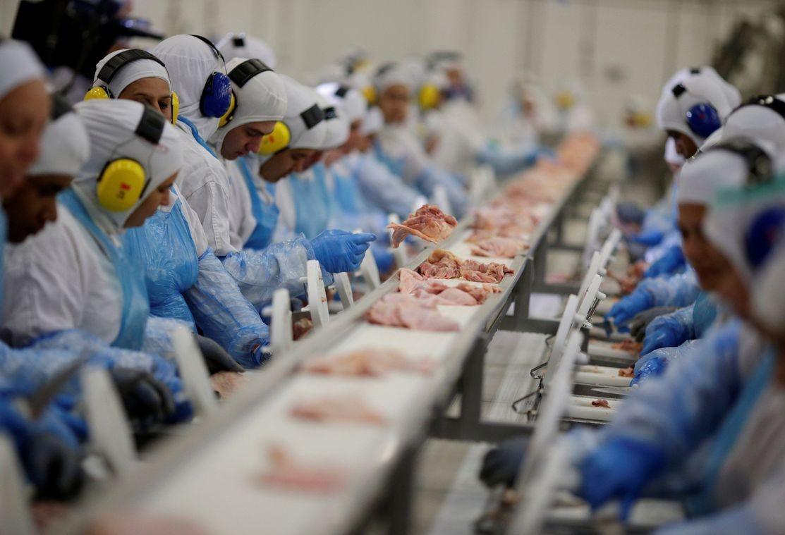 Exportação de frango recua; venda de carne bovina bate recorde