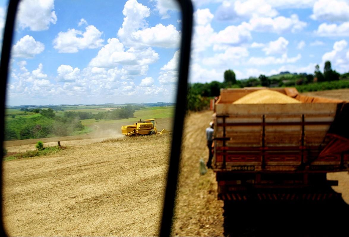 PIB da agropecuária se manteve estável no segundo trimestre