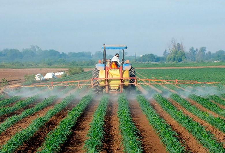 Mercado de grãos segue com pouca comercialização