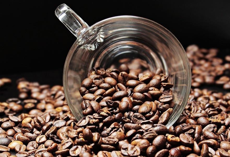 Café em coco custa R$ 6,80 o quilo em Apucarana
