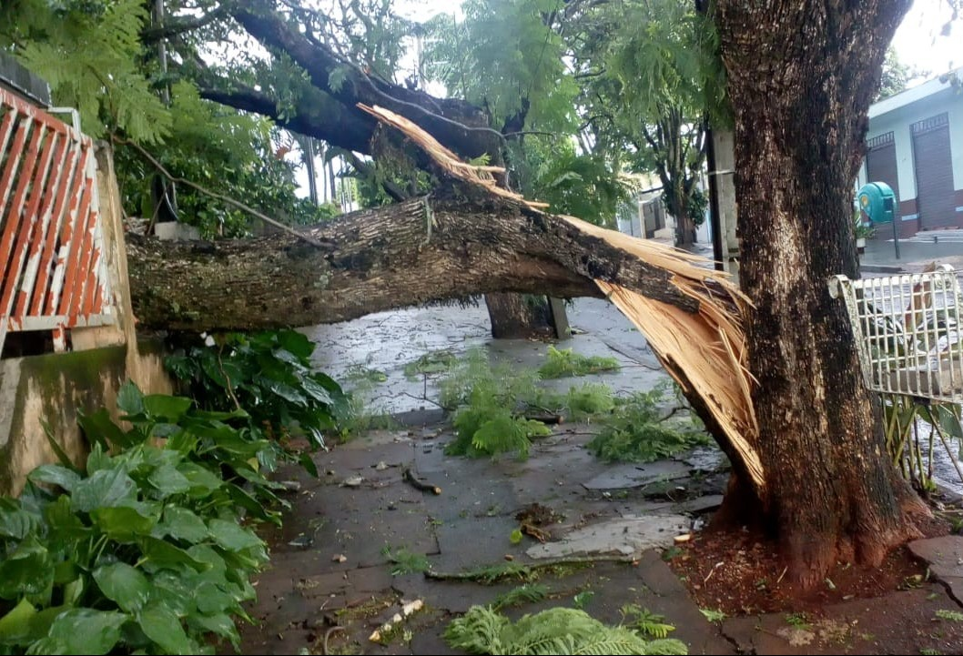 Novo temporal acumula estragos em Maringá