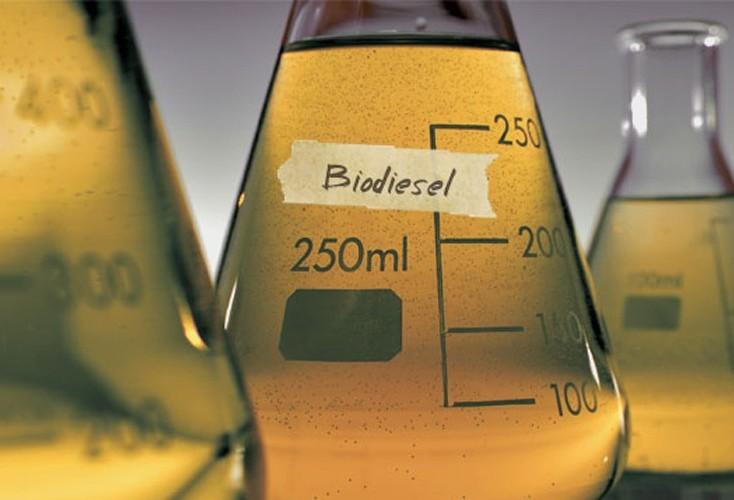 Abiove prevê que produção de biodiesel em 2020 será 20% maior que em 2019