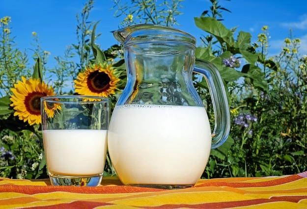 Produtores de leite não estão conseguindo saldar suas dividas