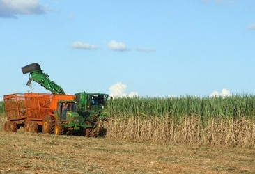 No Paraná, projeto prevê colheita mecanizada de cana-de-açúcar