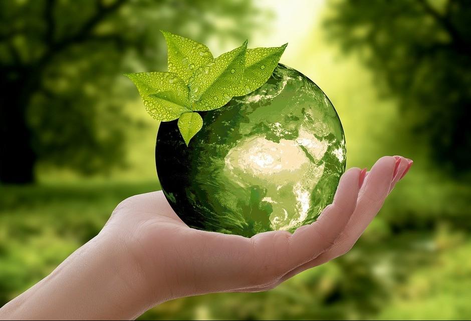 Organização religiosa se mobiliza para defender a sustentabilidade do planeta