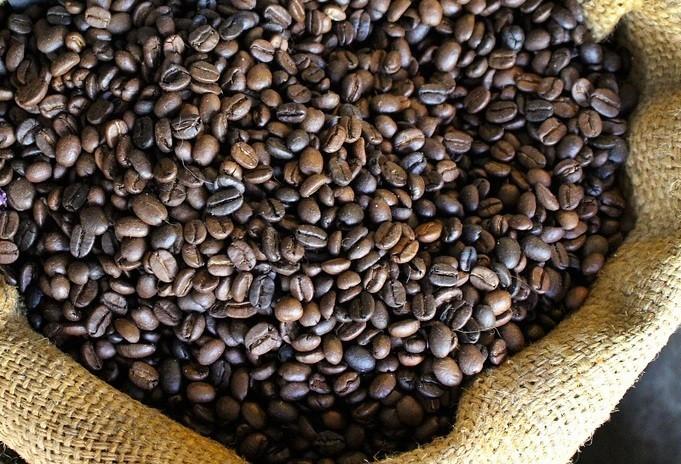 Café em coco custa R$ 6,90 kg