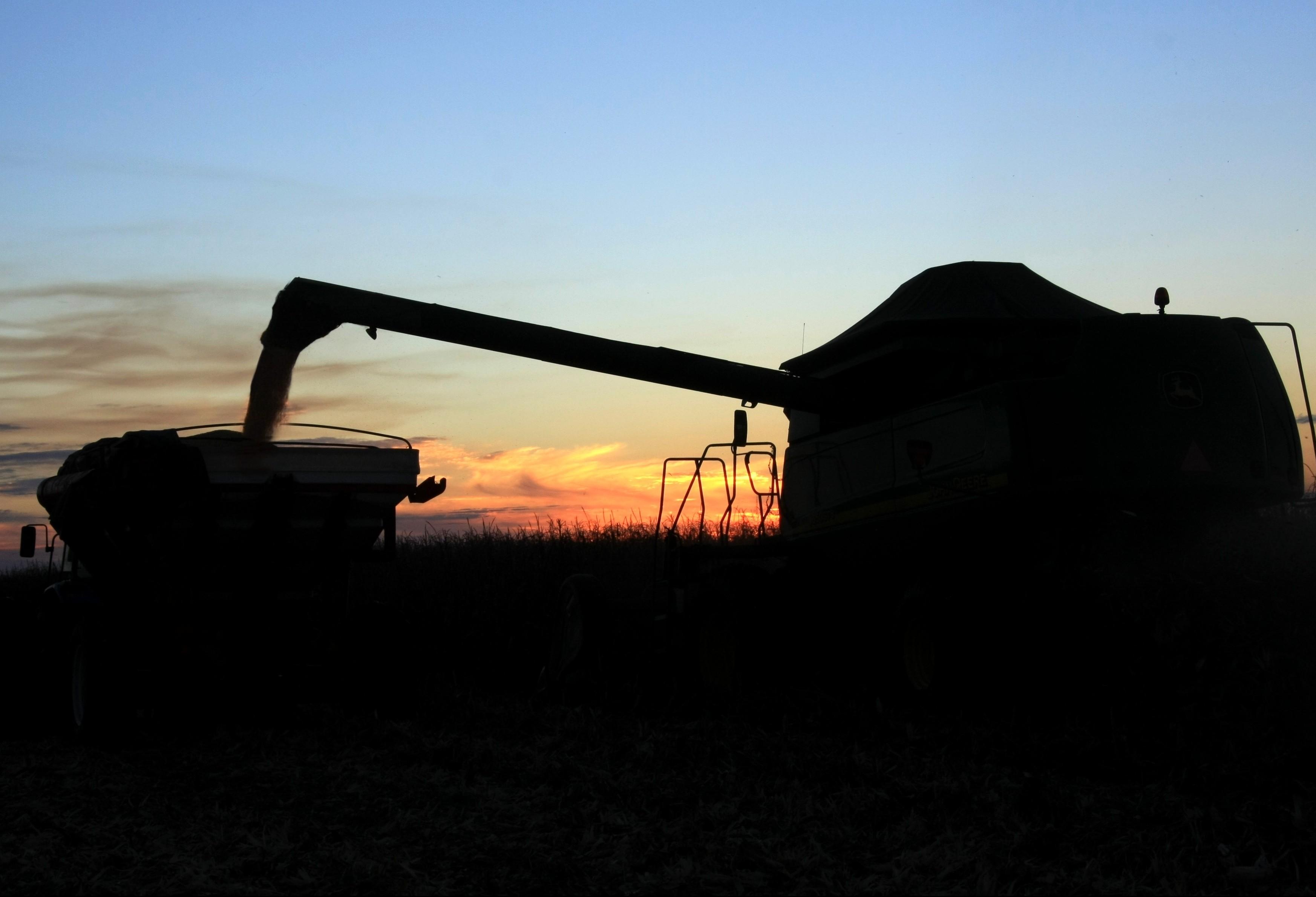 Agropecuária brasileira cresceu 0,7% no terceiro trimestre