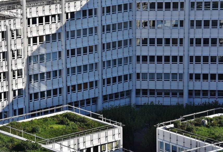 Microclima urbano é tema de estudo na Universidade de Sevilha, na Espanha