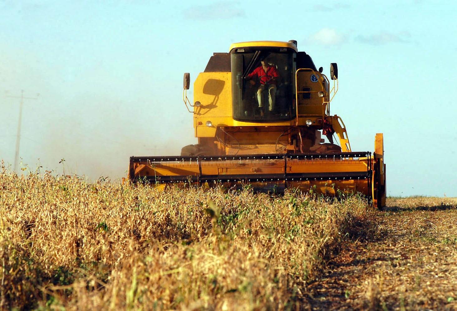 Começa colheita da soja no Brasil