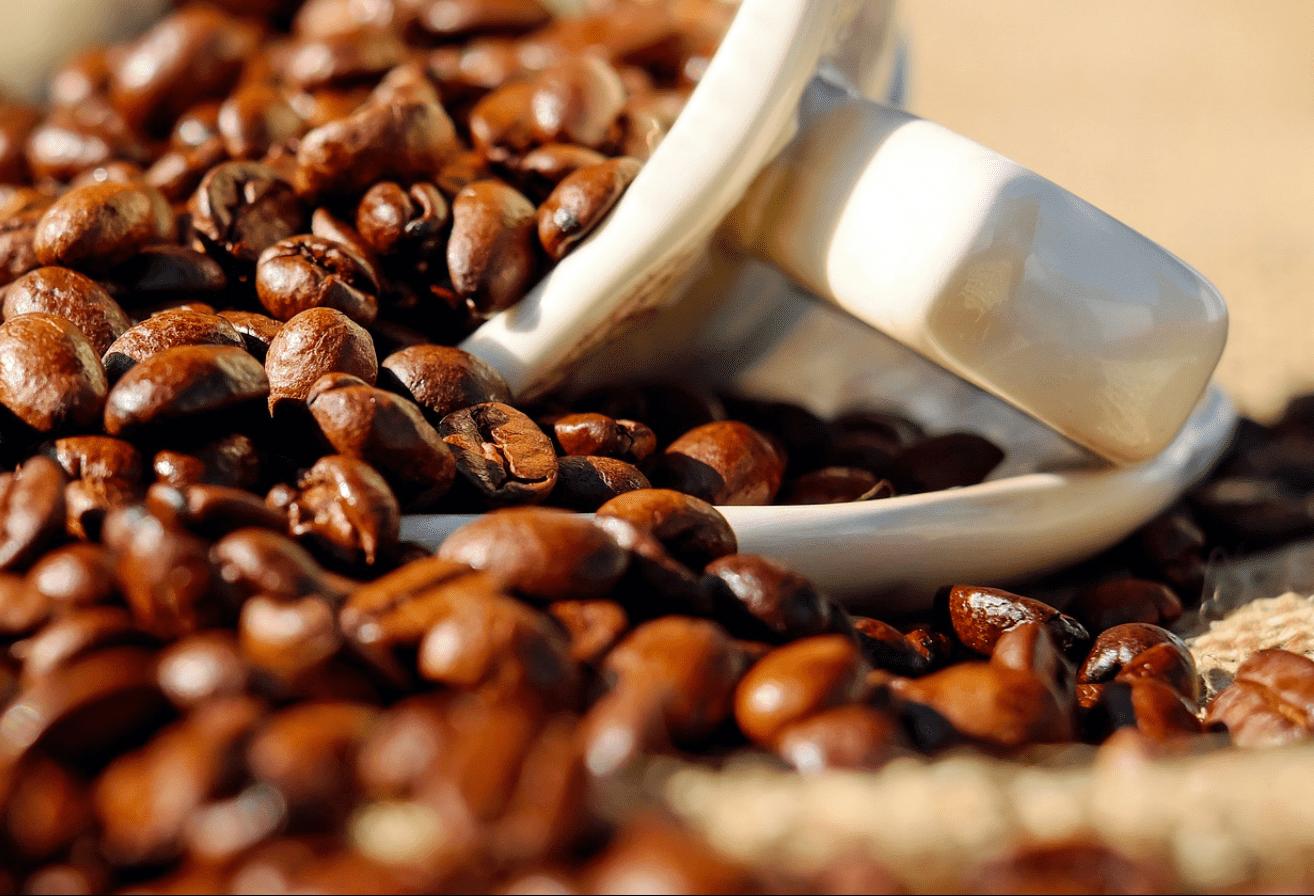 Café em coco custa R$ 6,16 o quilo em Maringá