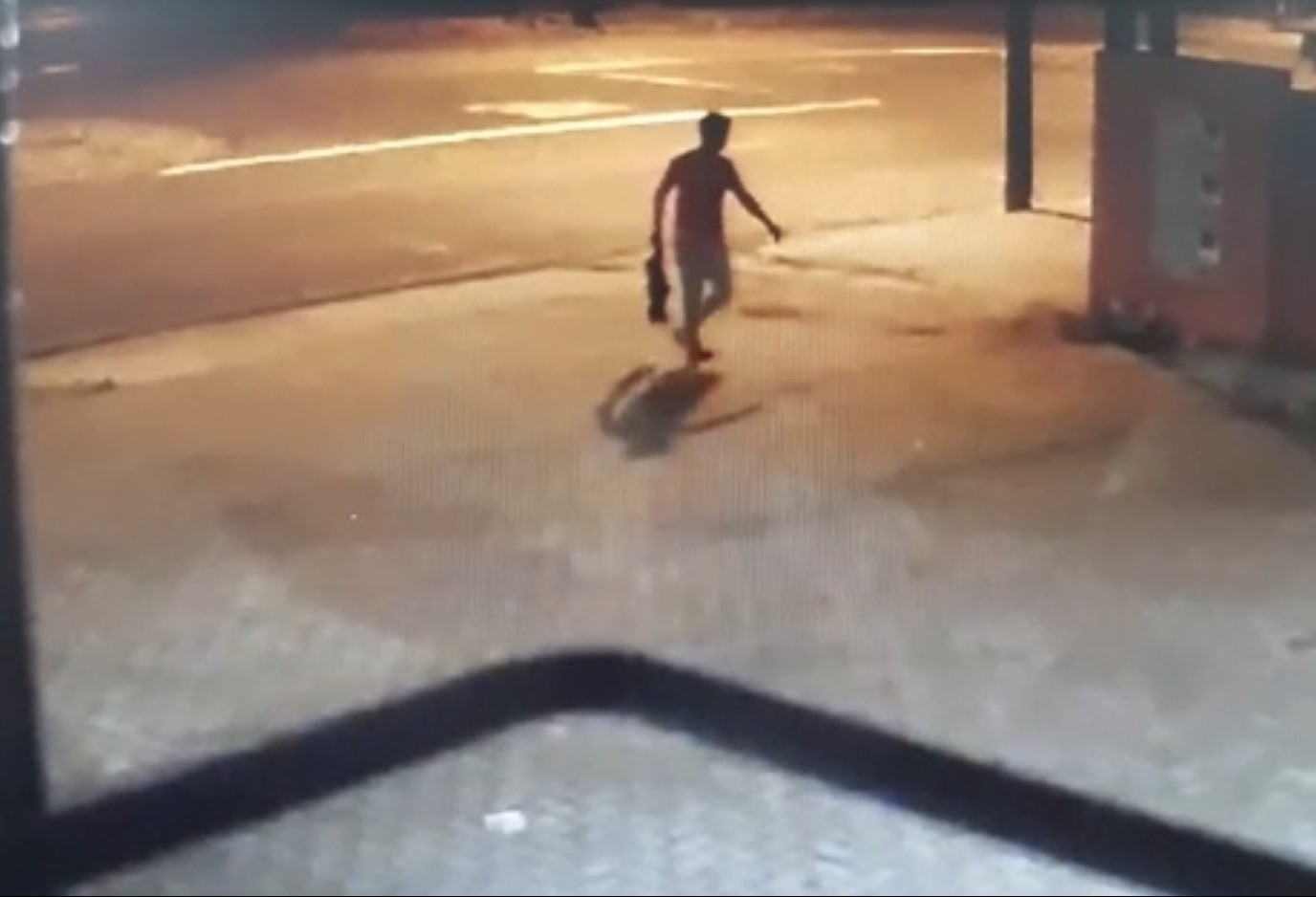 Justiça manda prender homem que invadiu casa e matou cachorro em Maringá