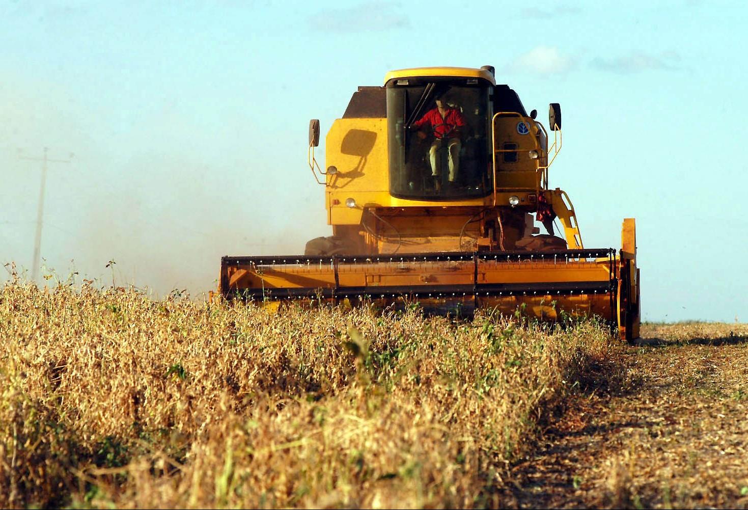 Colheita da soja alcança 10% da área plantada no Paraná