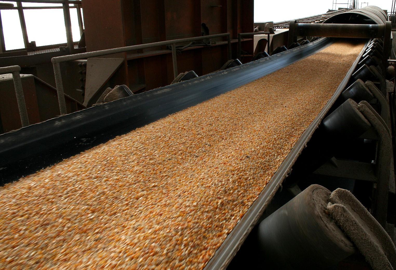 Exportações de milho por Paranaguá devem aumentar em abril e maio