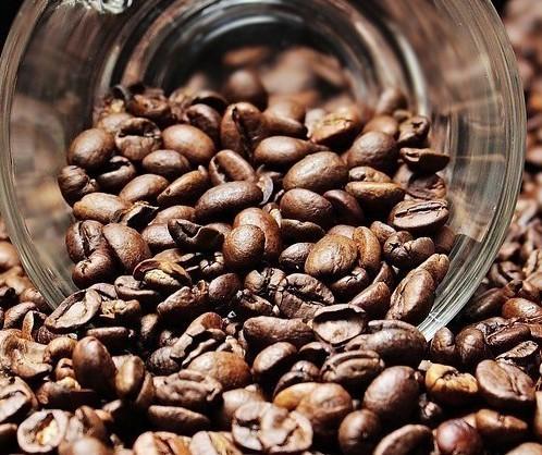 Café em coco custa R$ 6 o quilo em Maringá