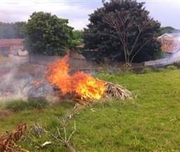 Incêndio em vegetação aumentou 46% em 2018 em Maringá