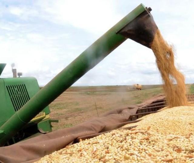 Entre as 10 maiores cidades do PR, Maringá é que mais abriu empresas do agronegócio em 2020