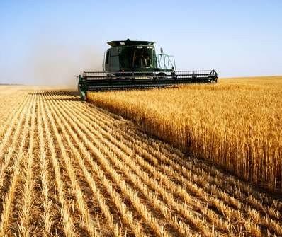 Agrônomo da Cocamar fala sobre desenvolvimento de soja e milho nos EUA
