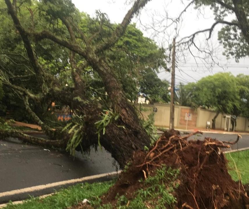 Uma pessoa morreu e duas ficaram feridas durante temporal no Paraná