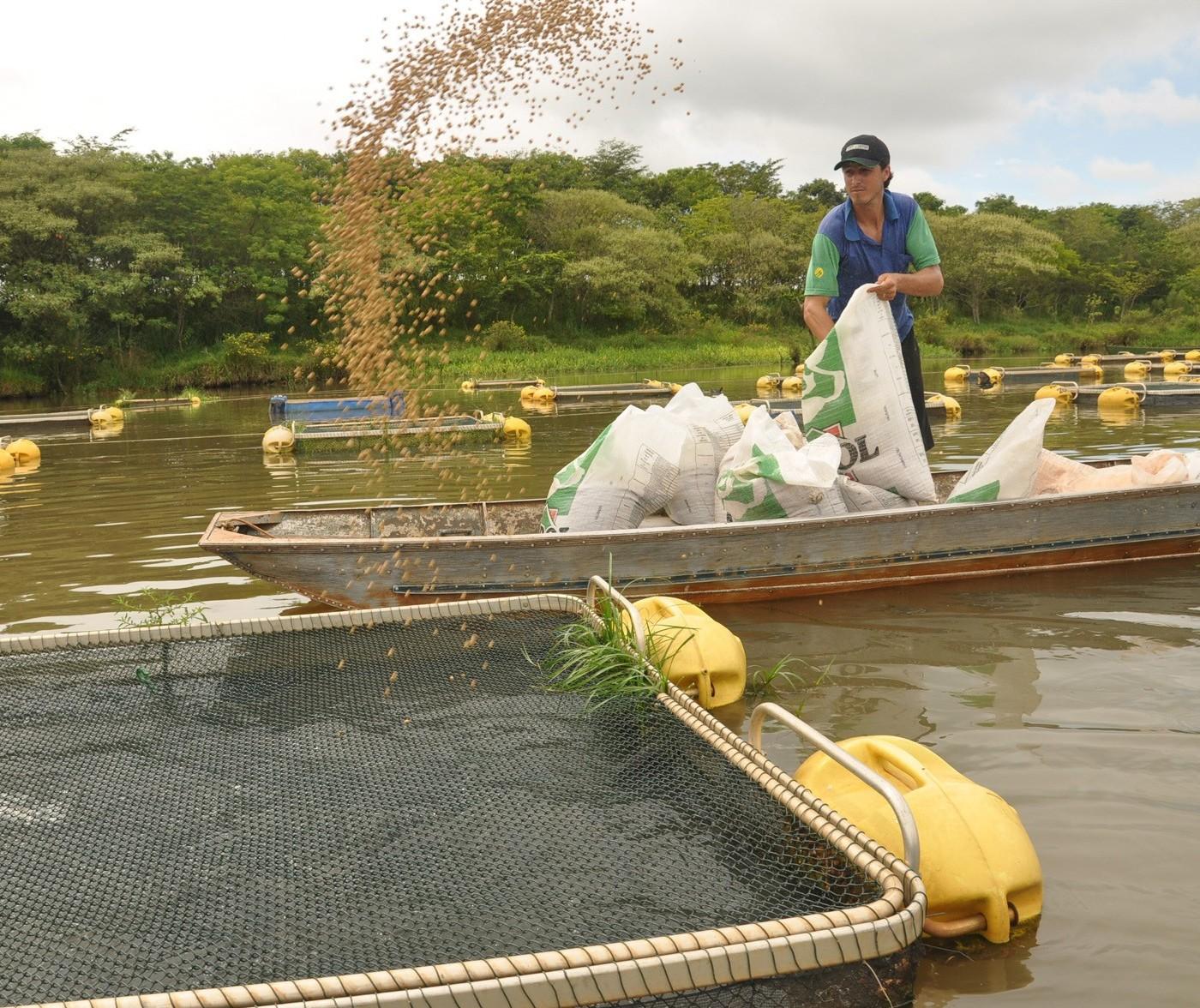 Comissão técnica vai definir diretrizes para a aquicultura no Paraná