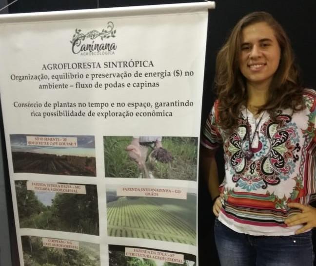Agrofloresta: cultivo sem desmatamento cresce no país