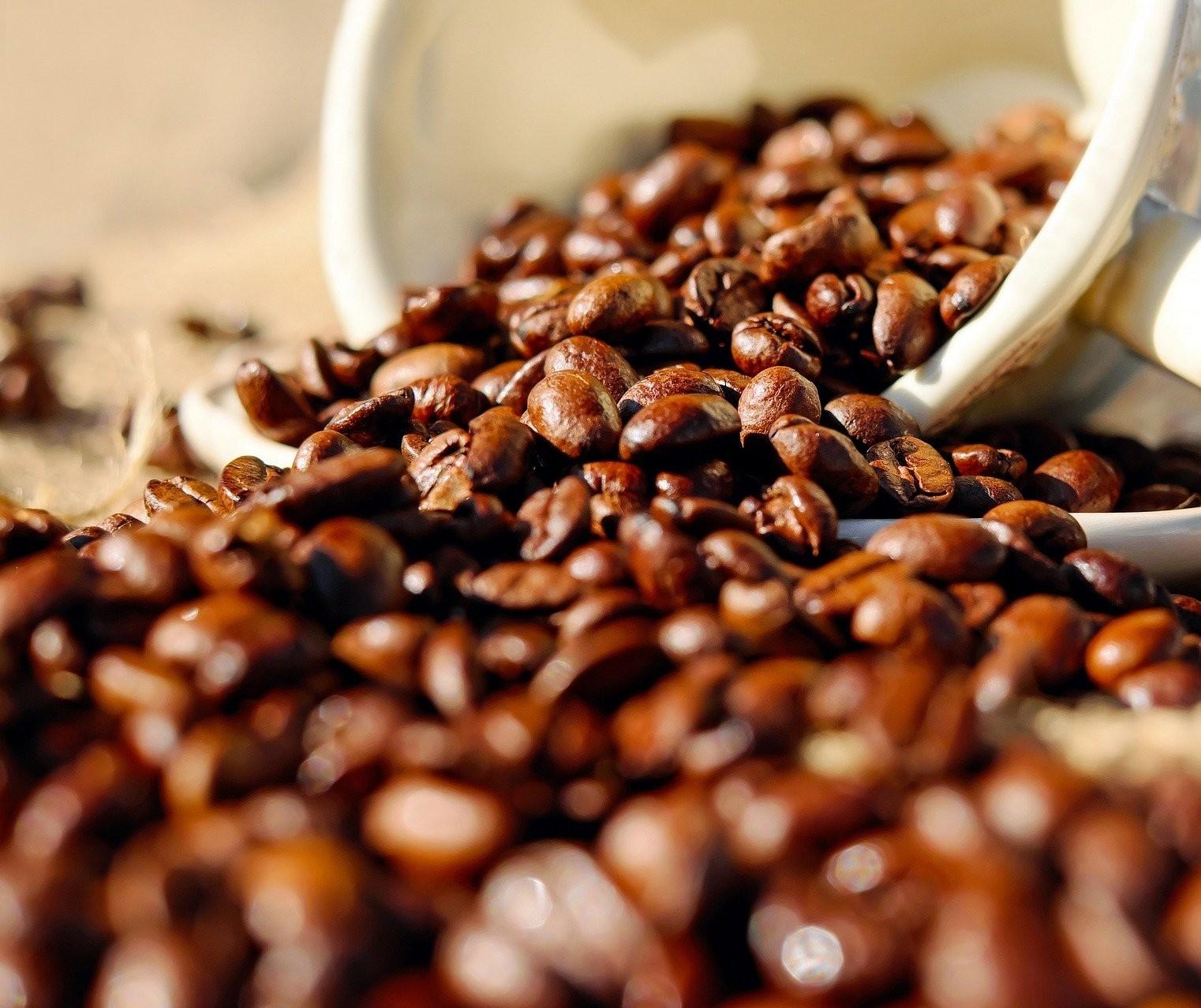 Produção de café do Brasil ocupa área de 1,8 milhão de hectares