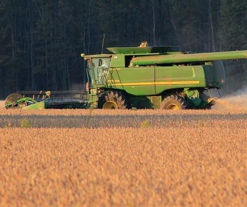 Puxado por soja, PIB agropecuário pode crescer entre 3,4% e 4,1%, diz Ipea