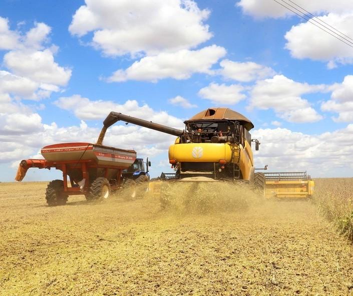 Agro brasileiro deve seguir crescendo em 2021, mas clima e dólar instável preocupam