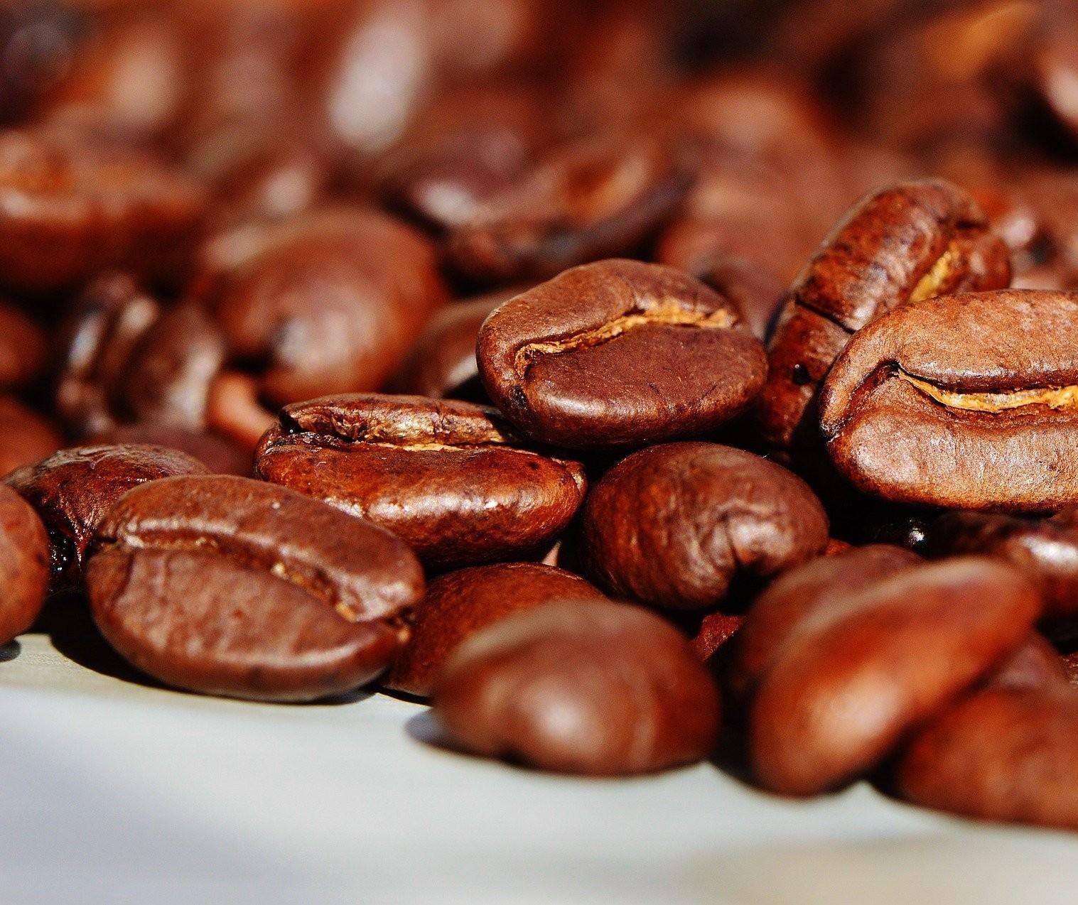 Café em coco custa R$ 7,65 Kg