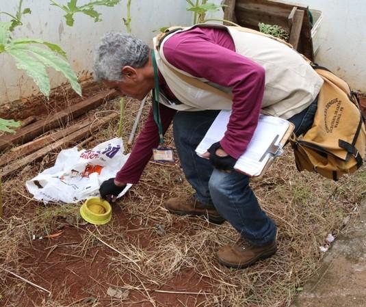 Sarandi, Maringá e Marialva realizam mutirão de combate à dengue