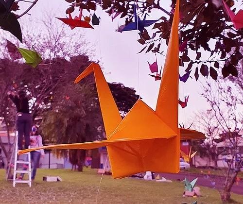 Simbolizando saúde e longevidade, artista expõe em Maringá mil dobraduras de tsurus