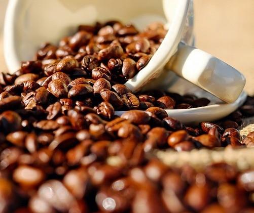 Conab mapeia áreas produtoras de café do Paraná