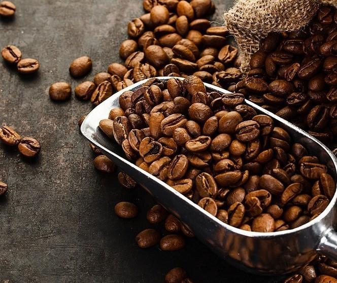 Saca de 60 Kg do café beneficiado custa R$ 369 em Maringá