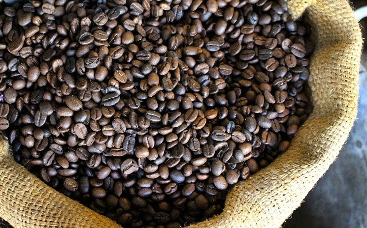 Número de exportações de café caíram 3,2% em novembro
