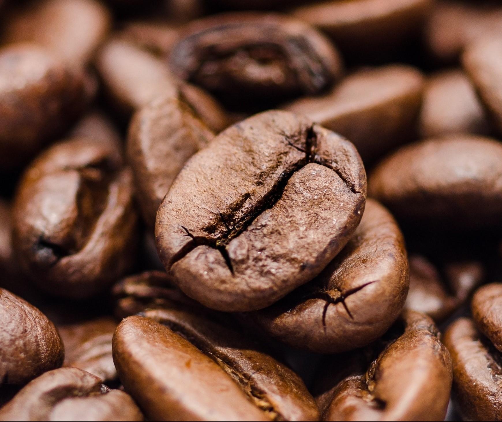 Café em coco custa R$ 7,50 Kg