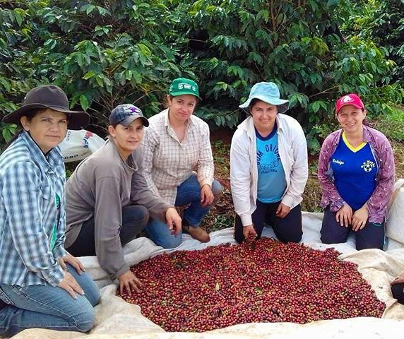 Plano Agro + Mulher incentiva a participação feminina em atividades agropecuárias
