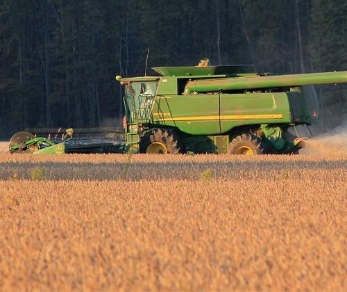 Colheita da soja segue lenta no sul do Brasil